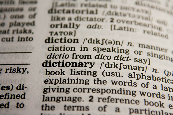 meaning of dictionary in dictionary