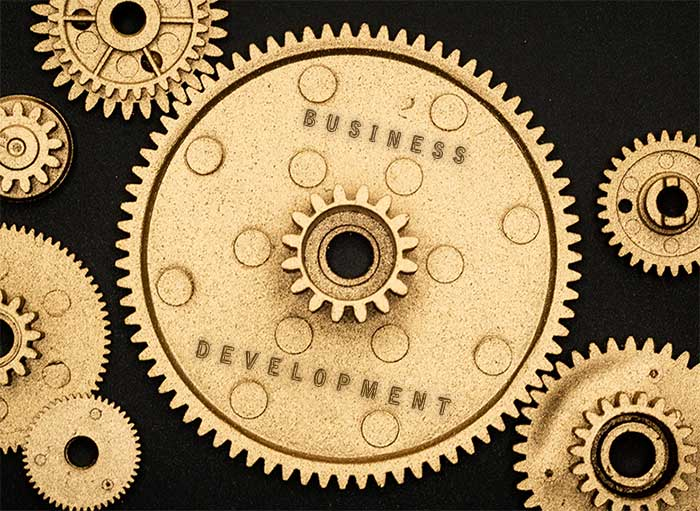 Cogs of Business Development