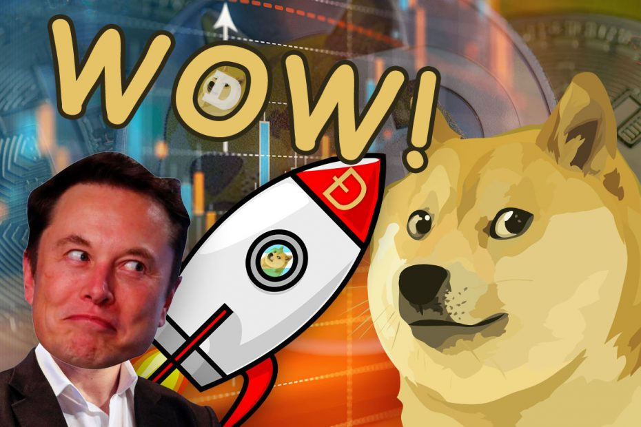 Dogecoin rise to the moon with Elon Musk SpaceX Rocket
