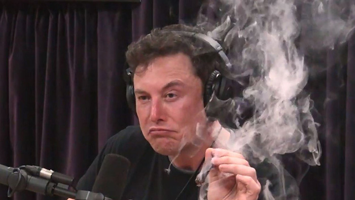 Elon Musk The Dogefather and CEO of Dogecoin Smoking Weed on Live Show