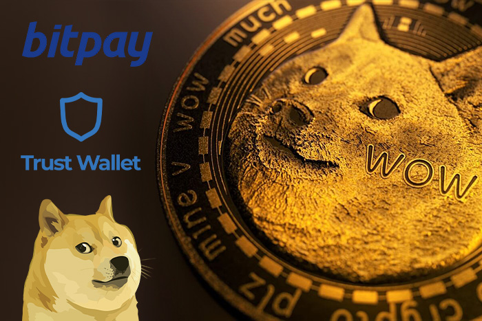 Buy & Hodl Dogecoin to rise to the Moon on safe Crypto Wallets