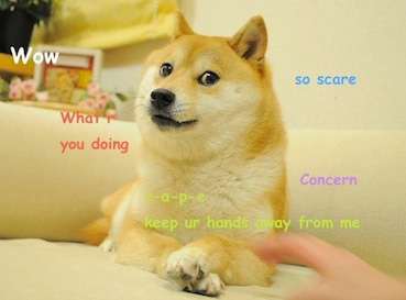 Dogecoin inspired by the Original Doge Meme